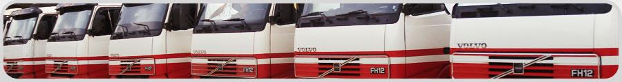 Infra Estrutura - Ter Logistica - Transportadora